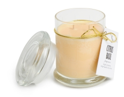 Citrus soy candle